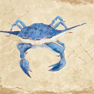 Blue Crab VI Neutral by Phyllis Adams