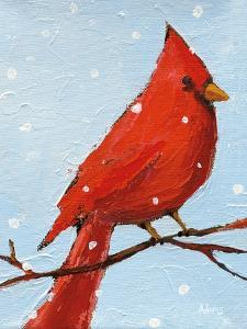 Cardinal I by Phyllis Adams