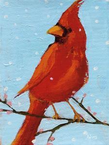 Cardinal II by Phyllis Adams