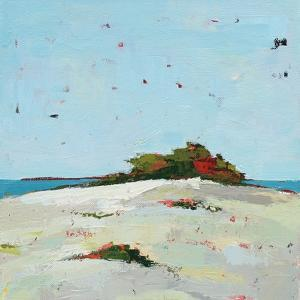 Fall Dune by Phyllis Adams