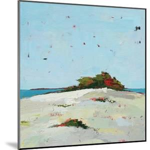 Fall Dune by Phyllis Adams