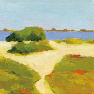 Path to the Beach by Phyllis Adams