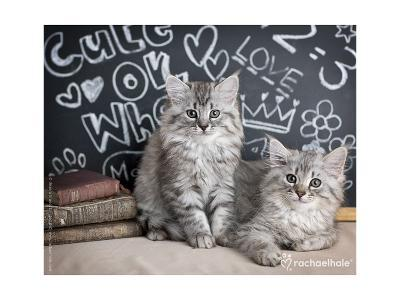 Phyllis & Jo-Rachael Hale-Photo