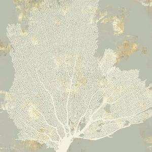 Sea Coral I by PI Creative Art