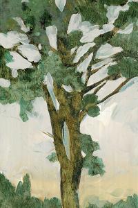 Green Tree Line I by PI Studio