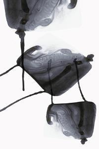Inked II by PI Studio