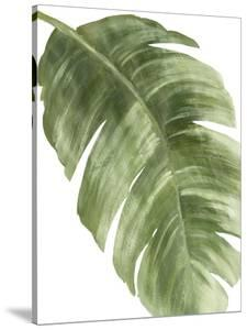 Palm Green II by PI Studio