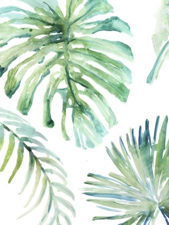 Palm Leaf Variation