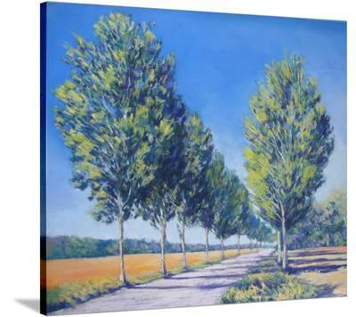 Picardy Poplars IV--Stretched Canvas Print