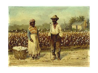 Picked Cotton-William Aiken Walker-Giclee Print