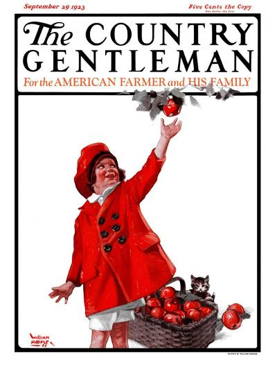 """Picking Apples,"" Country Gentleman Cover, September 29, 1923-WM. Hoople-Giclee Print"