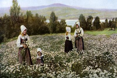 Picking Flowers in a Meadow Near Leksand, Sweden, C1923--Giclee Print