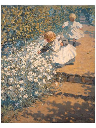 Picking Flowers- McNicoll-Premium Giclee Print