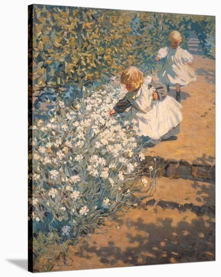 Picking Flowers- McNicoll-Stretched Canvas Print