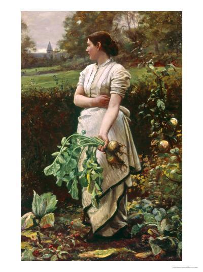 Picking Turnips-Robert Crawford-Giclee Print