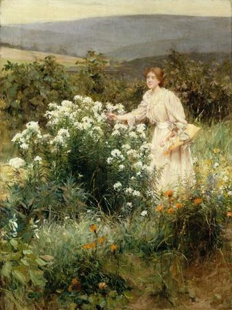 https://imgc.artprintimages.com/img/print/picking-wild-flowers_u-l-q13i51v0.jpg?p=0