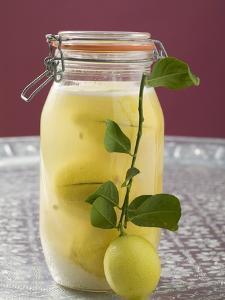 Pickled Lemons in Jar, Small Branch with Fresh Lemon