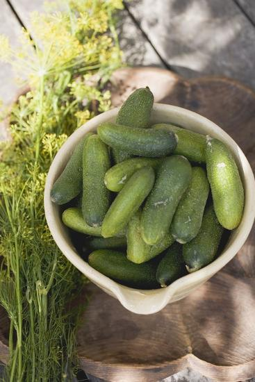 Pickling Cucumbers in Bowl, Fresh Dill Beside It-Foodcollection-Photographic Print