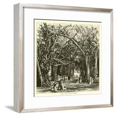 Picnic under Banyan Trees--Framed Giclee Print
