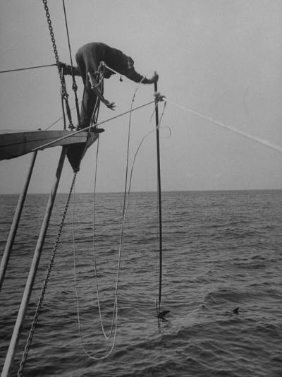 Picture Showing the Swordfish Striking a Line--Photographic Print