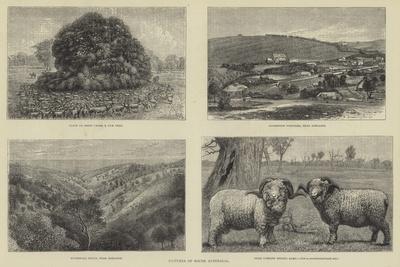 https://imgc.artprintimages.com/img/print/pictures-of-south-australia_u-l-pusi350.jpg?artPerspective=n