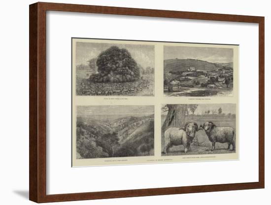 Pictures of South Australia-Samuel Edmund Waller-Framed Giclee Print