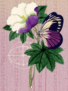 Butterfly Botanical Industrial Collage by Piddix