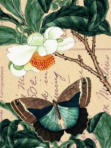 Butterfly Botanical Japanese Flower Collage by Piddix