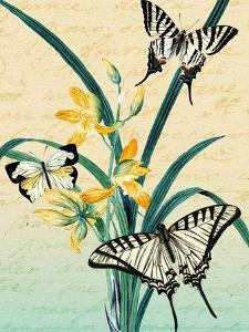Butterfly Botanical Yellow Flowers Collage by Piddix