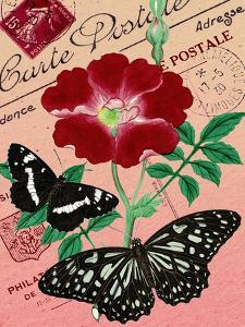"""Carte Postale"" Red Butterfly Botanical Collage by Piddix"