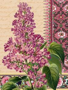 Lilacs on Love Letters by Piddix