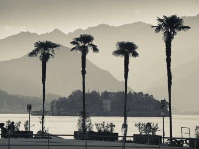 Piedmont, Lake Maggiore, Borromean Islands, Stresa, Lakefront Palms with Isola Bella, Italy-Walter Bibikow-Photographic Print