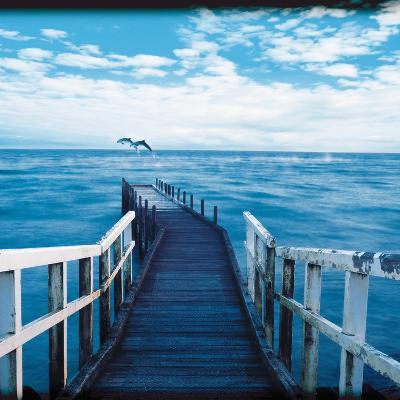 Pier and Dolphins-Colin Anderson-Photographic Print