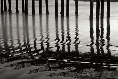Pier Pilings 14-Lee Peterson-Photographic Print