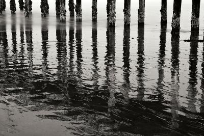 Pier Pilings 15-Lee Peterson-Photographic Print