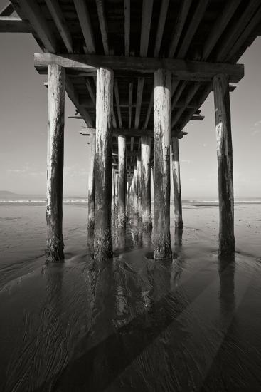 Pier Pilings 16-Lee Peterson-Photographic Print
