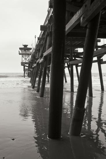 Pier Pilings 17-Lee Peterson-Photographic Print