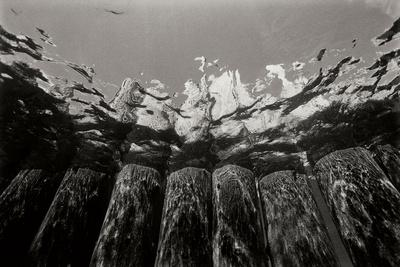 Pier Pilings 1-Lee Peterson-Photographic Print
