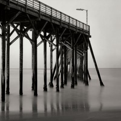 Pier Pilings 20-Lee Peterson-Photographic Print