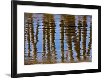 Pier Reflections II-Lee Peterson-Framed Photo