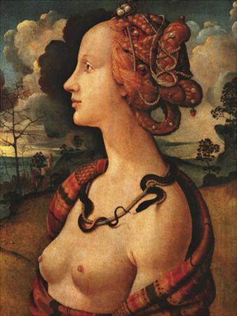 Portrait of Simonetta Vespucci, c. 1480 by Piero di Cosimo