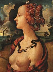 Portrait of Simonetta Vespucci, c. 1480 by Piero di Cosimo