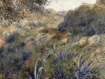 Paysage algérien, le ravin de la Femme Sauvage (faubourg d'Alger) by Pierre-Auguste Renoir
