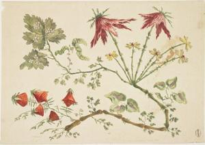 Ornament, Chinoiserie, Flowers, June 30, 1760 by Pierre-Charles Canot