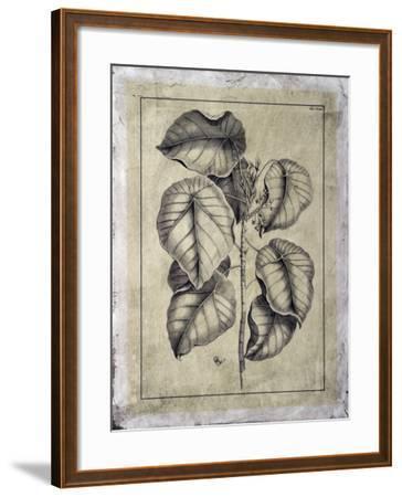 Embellished Antique Foliage IV
