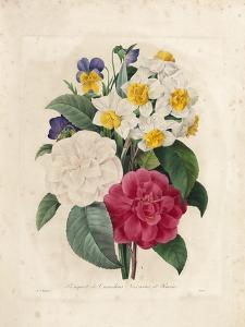 Bouquet of Camellias by Pierre-Joseph Redouté