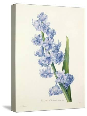 Hyacinthus Orientalis (Common Hyacinth), Engraved by Victor, from 'Choix Des Plus Belles Fleurs',…