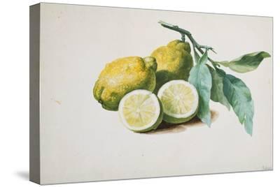 Lemons, 1840