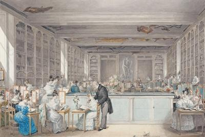 Pierre-Joseph Redouté\'s School of Botanical Drawing in the Salle ...