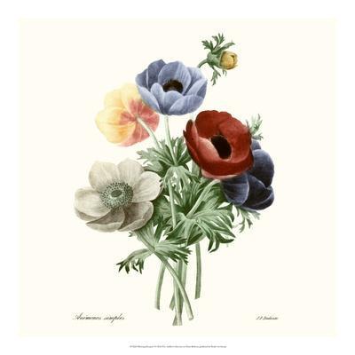 Blushing Bouquet I